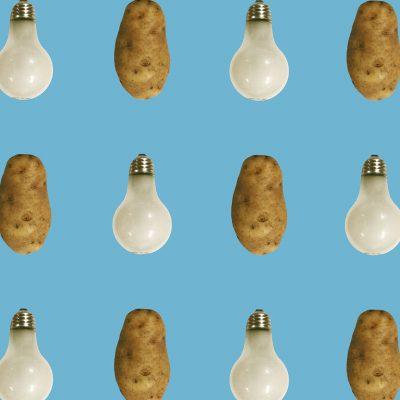 John Baldessari, « Potato/Lightbulb - Blue », 2015, papier peint. ©Maharam