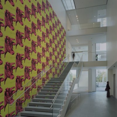 Museum of Modern Arts, New York. Staircase to 2nd floor with Andy Warhol's Cow wallpaper in The Lewis B. and Dorothy Cullman Education and Research Building, designed by Yoshio Taniguchi. © 2006 Timothy Hursley.   Andy Warhol, Cow wallpaper, 1966.  © 2006 Andy Warhol Foundation for the Visual Arts / Artists Rights Society (ARS), New York