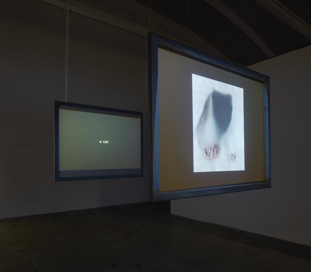 Jake Elwes, Closed Loop (2017)